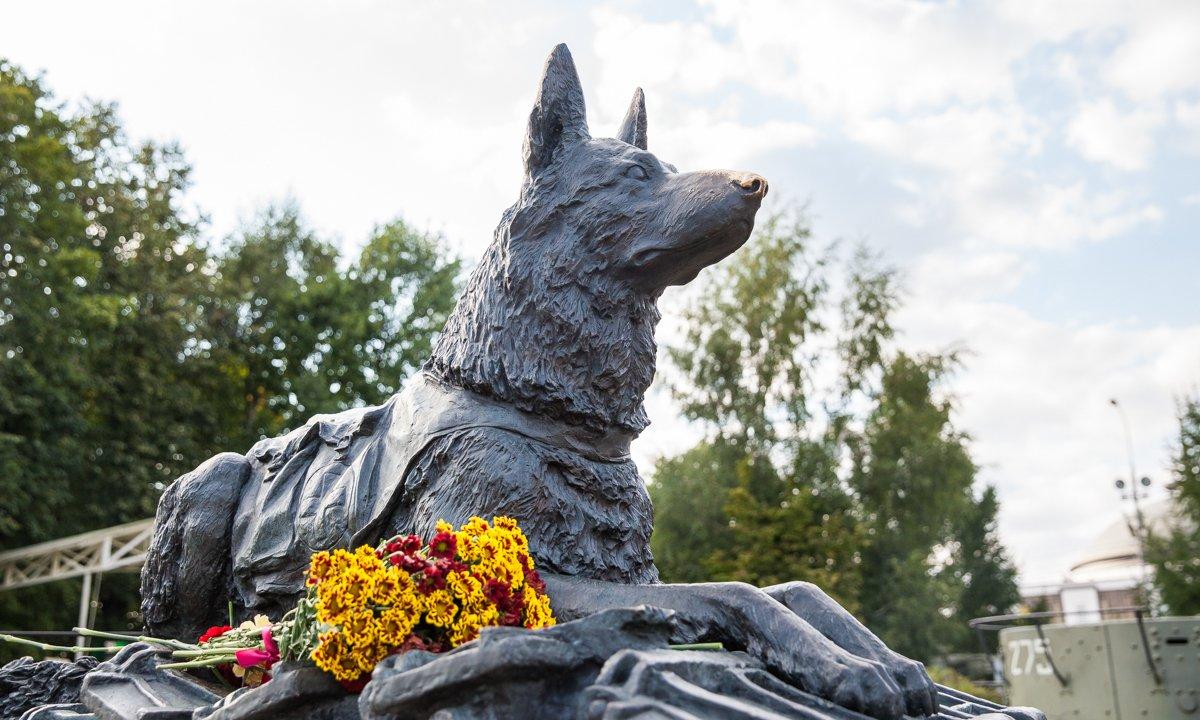 День фронтовой собаки вМузее Победы 2019