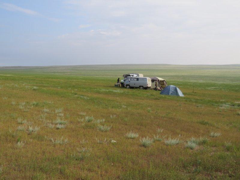 Выставка «Монголия далекая— близкая»