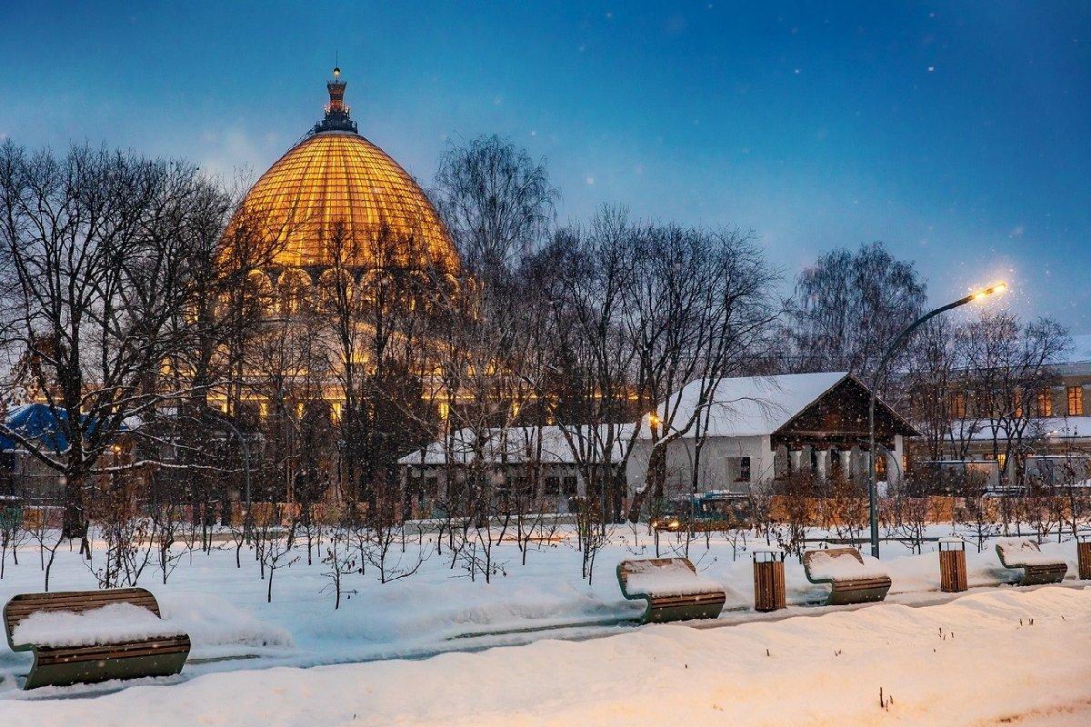 Зимние экскурсии поВДНХ 2021
