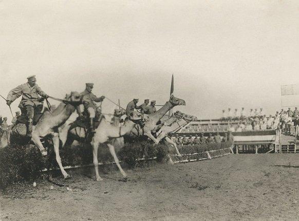 Выставка «Война имир. Назаре фотожурналистики. 1910-е годы»