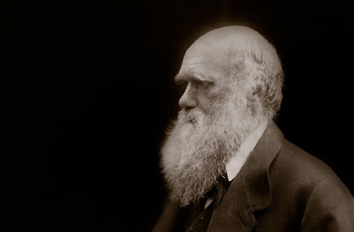 Выставка «Дарвин. Жизнь впортретах»