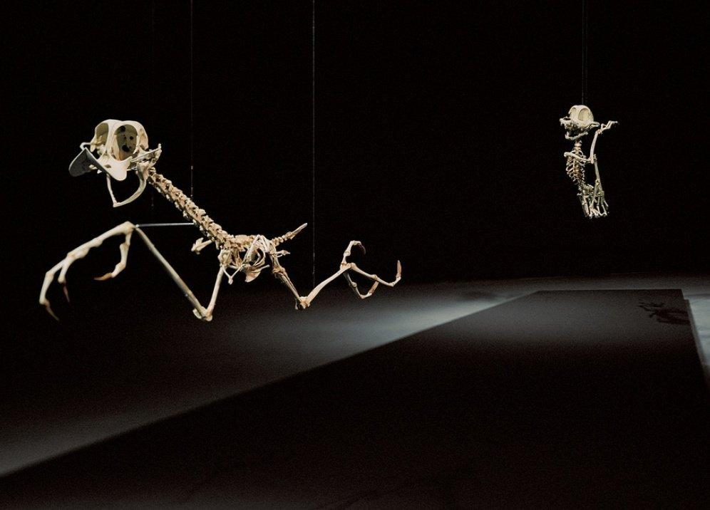 Выставка «Animatus»