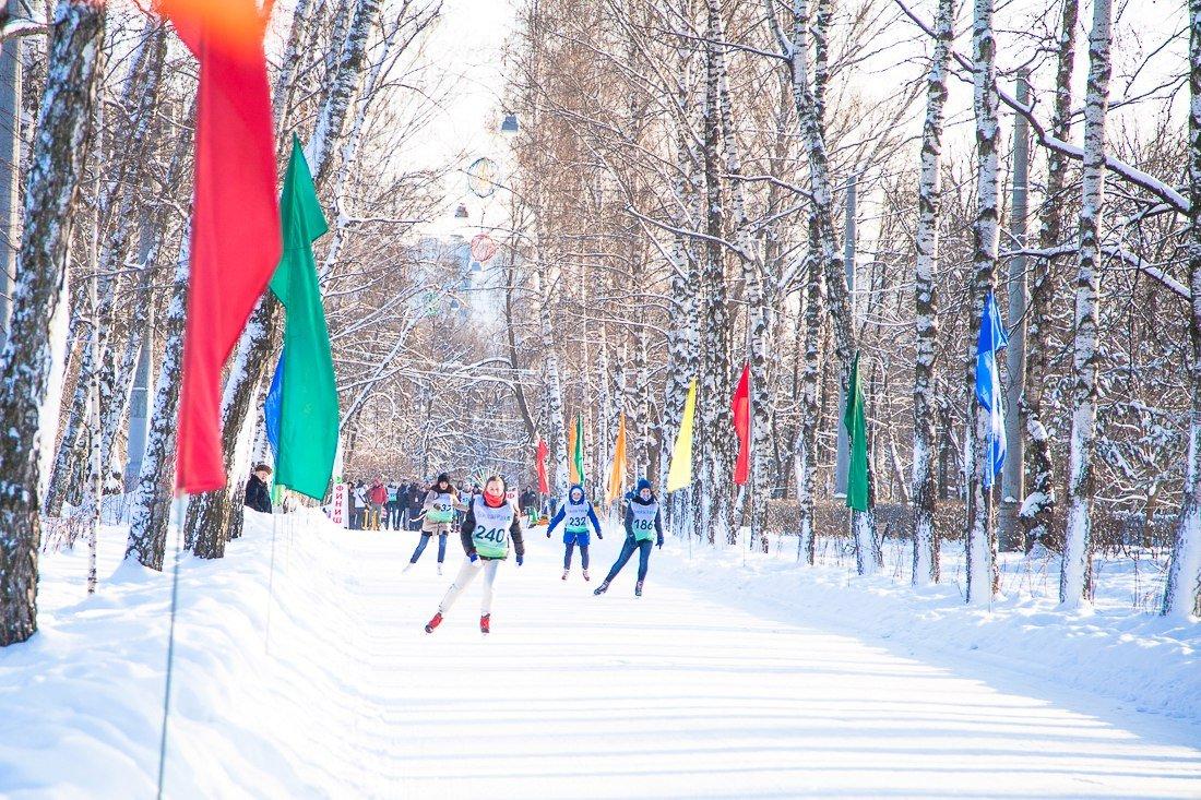 День зимних видов спорта 2016