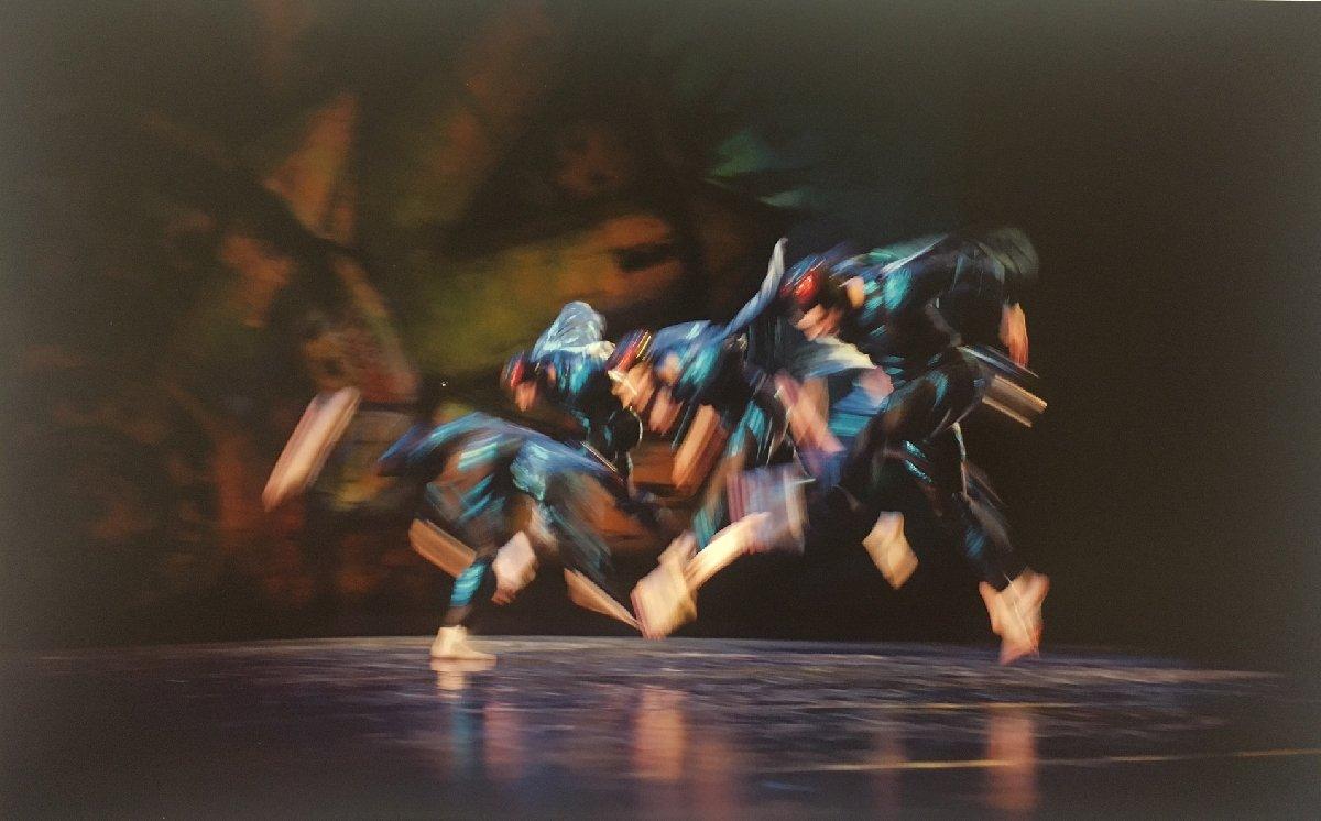 Выставка «Михаил Барышников, изцикла «Танец»