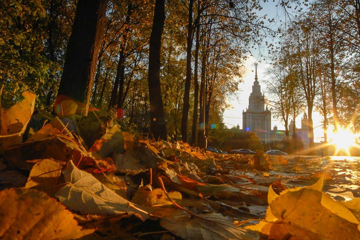 Топ-10 лучших событий навыходные 10 и11 октября вМоскве