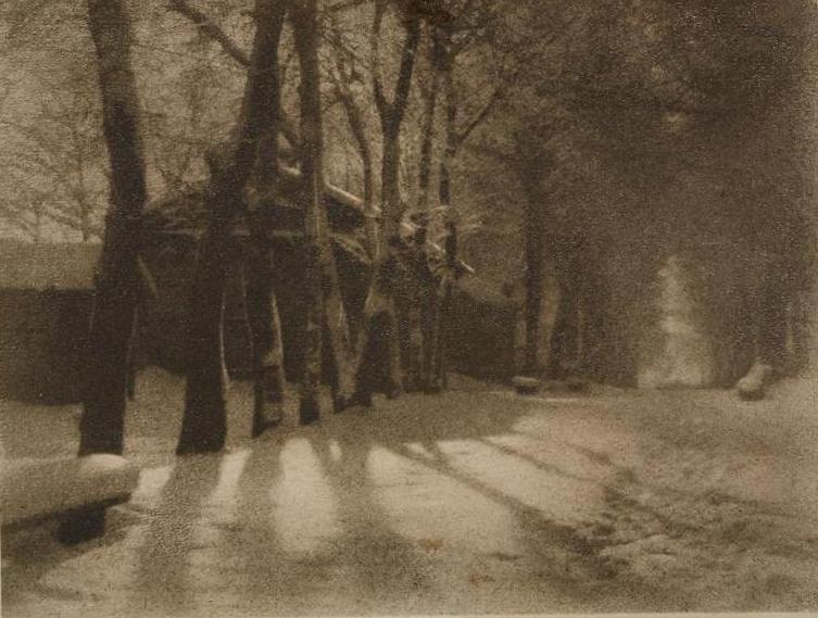 Выставка «Фотограф Николай Андреев. Мастер пикториализма»