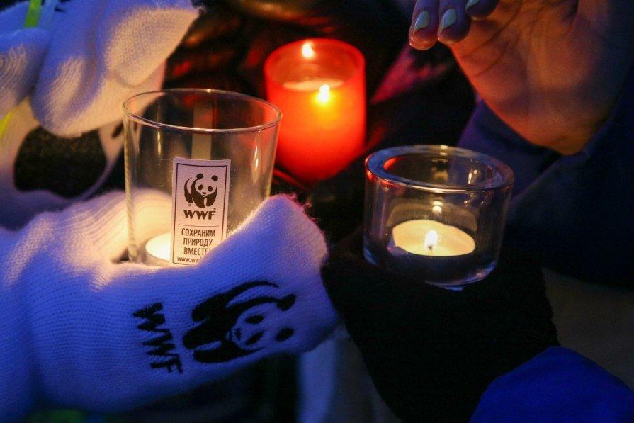 Акция «Час Земли» 2015