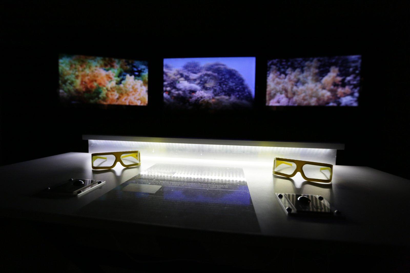 Выставка «Коралловый риф– отпланктона доакул»