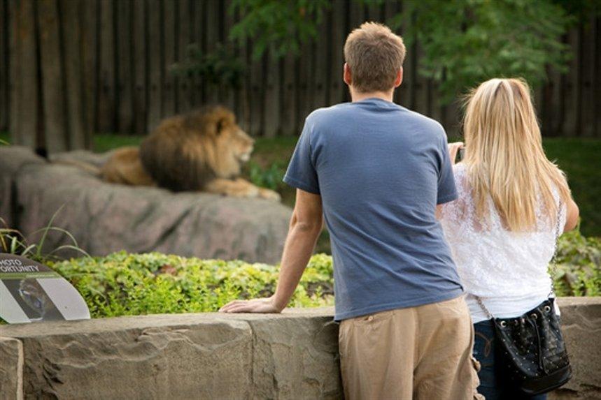Вдвоём в зоопарке