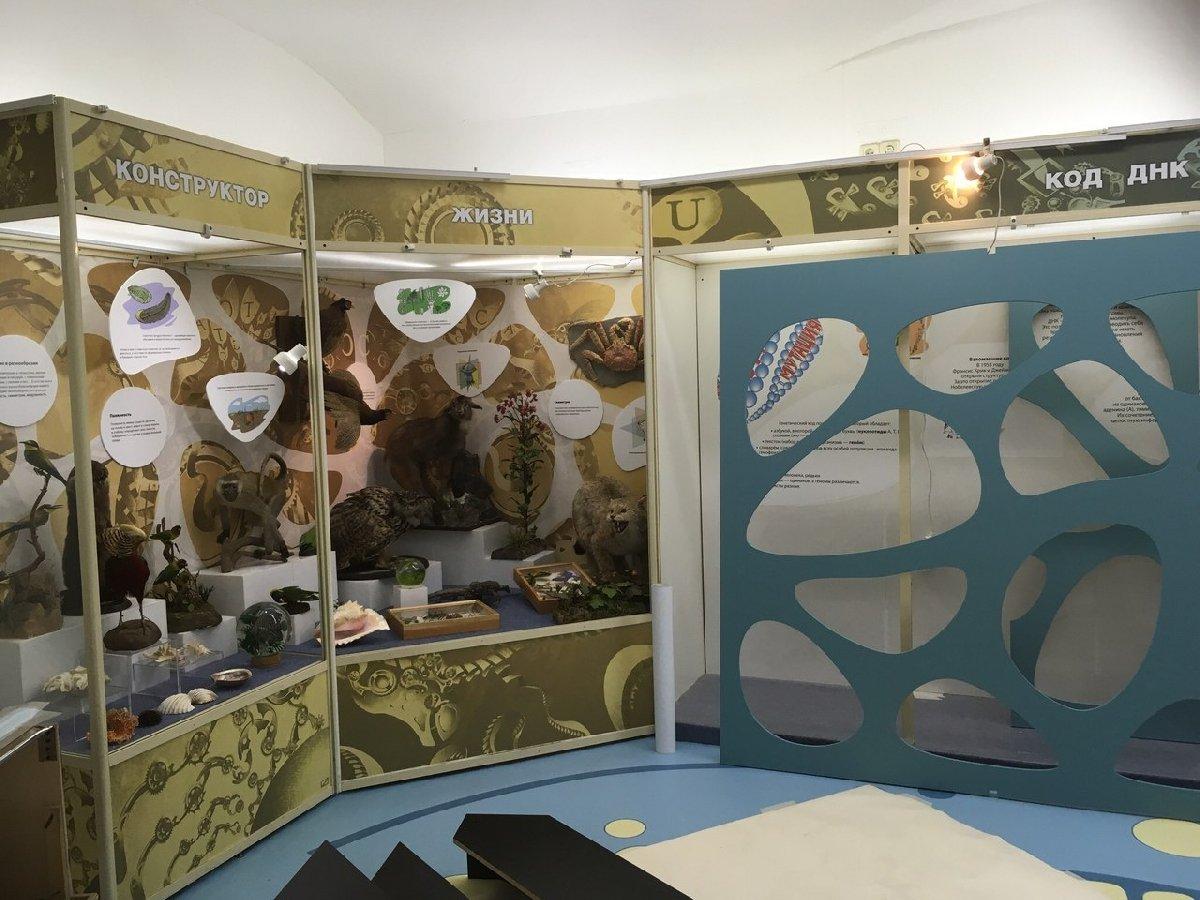 Выставка «ЧП вДНК»