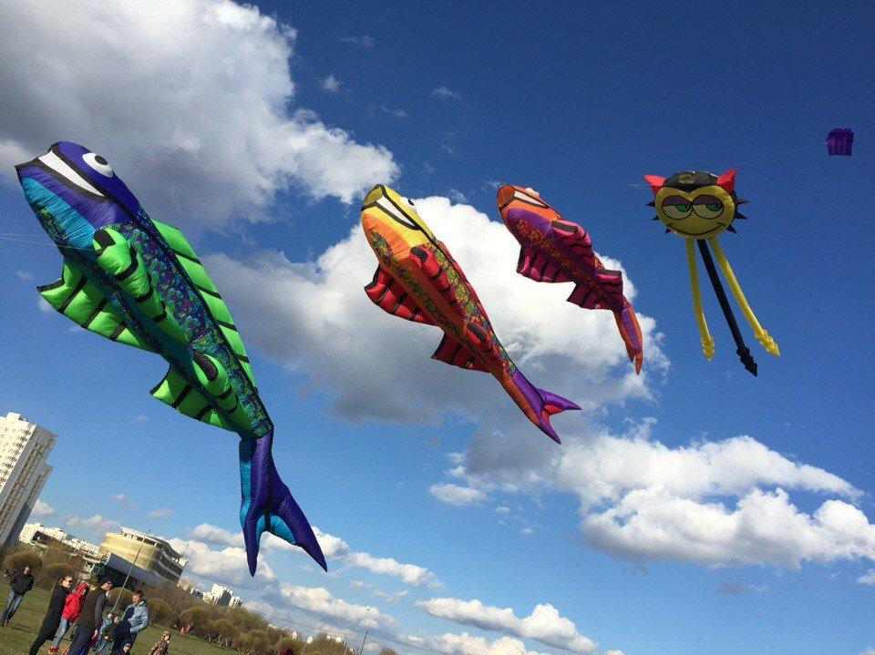 XIV Фестиваль воздушных змеев «Пестрое небо»