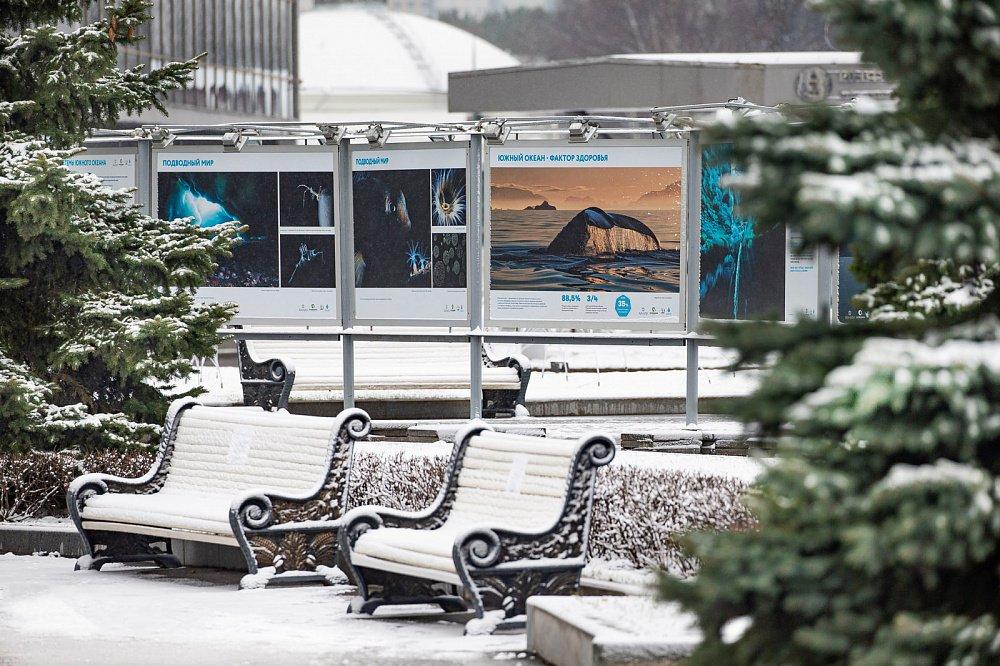 Фотовыставка «Открываем Антарктику вместе»