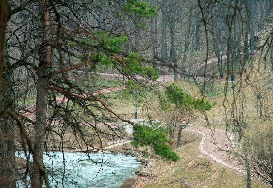 Терренкур вмузее-заповеднике «Царицыно»