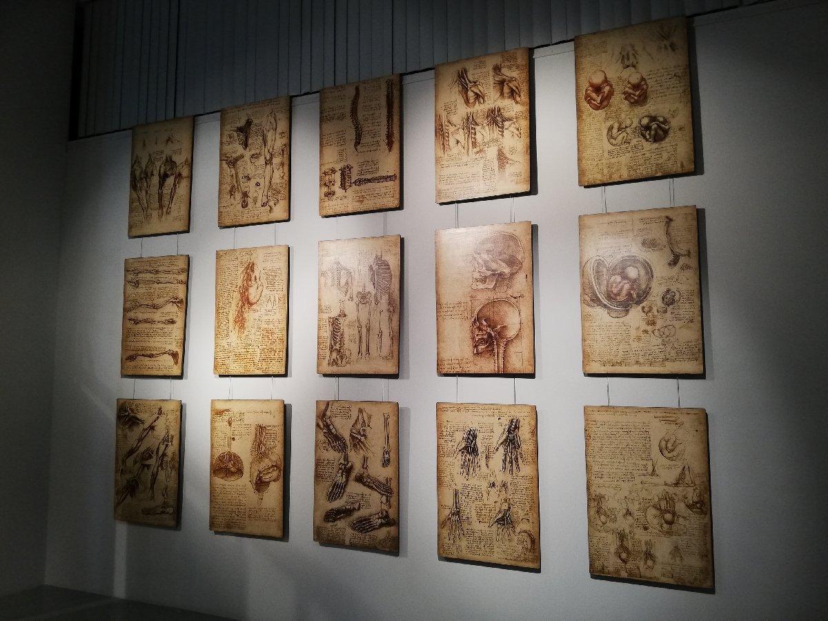 Выставка Леонардо даВинчи «Ожившие изобретения»