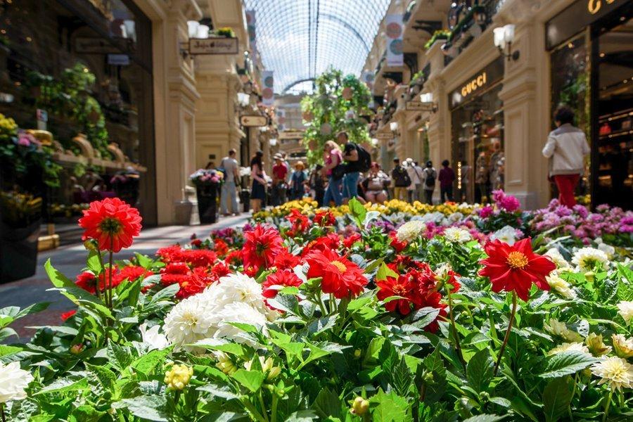 Фестиваль цветов в москве 2017 где пройдет