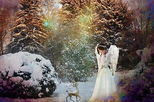 Рождество впарках Москвы 2016