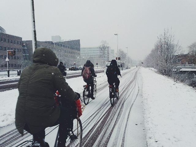 Всемирная зимняя акция «На работу навелосипеде» 2018