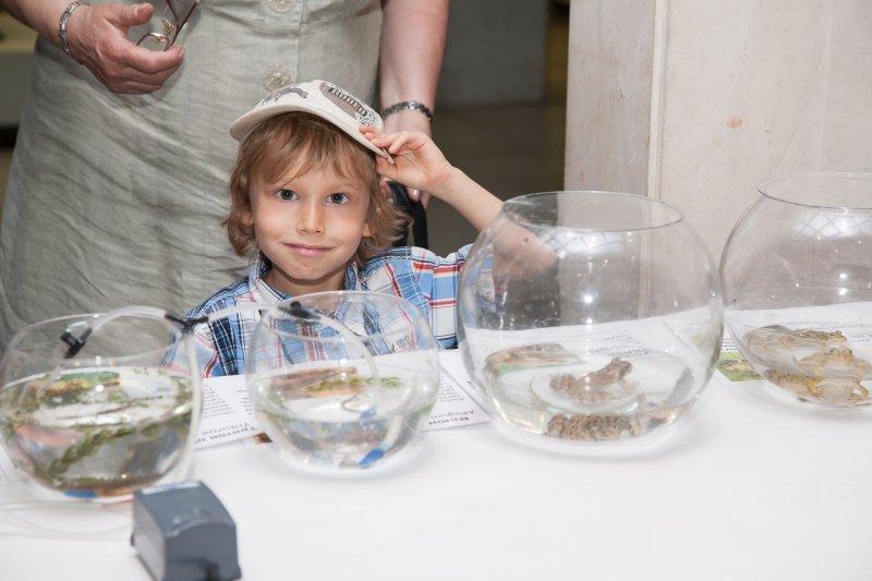 День эколога вДарвиновском музее 2019
