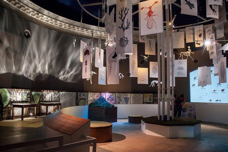 Выставка «Алиса вСтране наук»