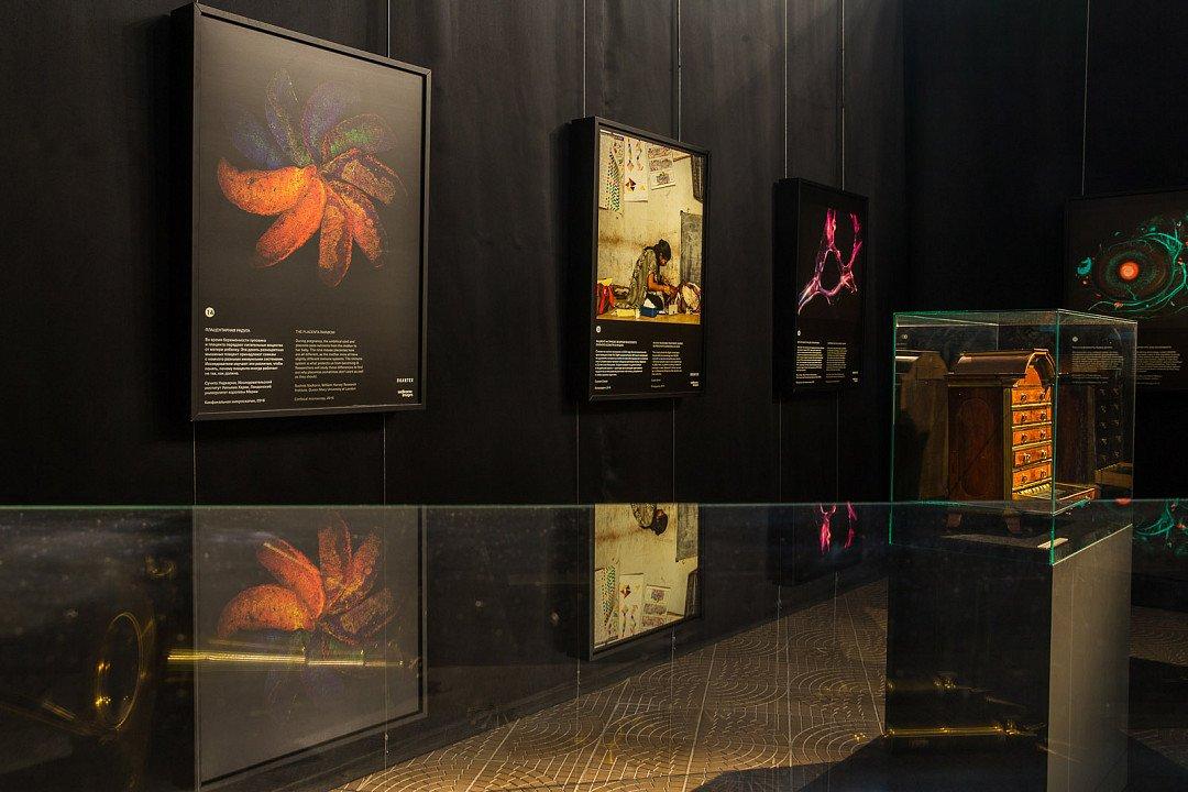 Выставка «Максимальное приближение»