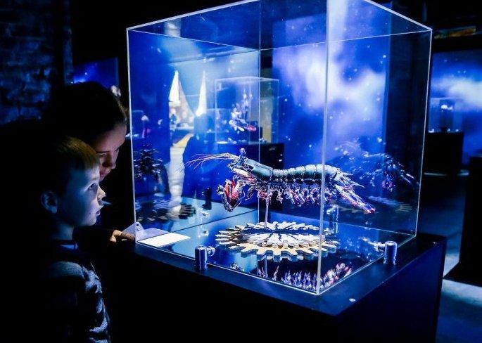 Выставка «Таинственные обитатели Вселенной»
