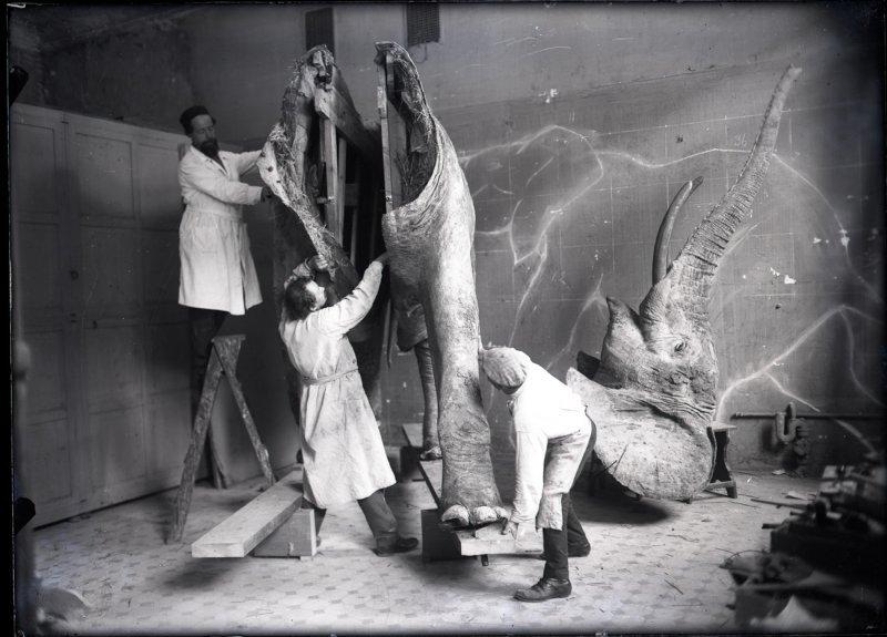 Выставка «25 фактов изжизни основателя музея»