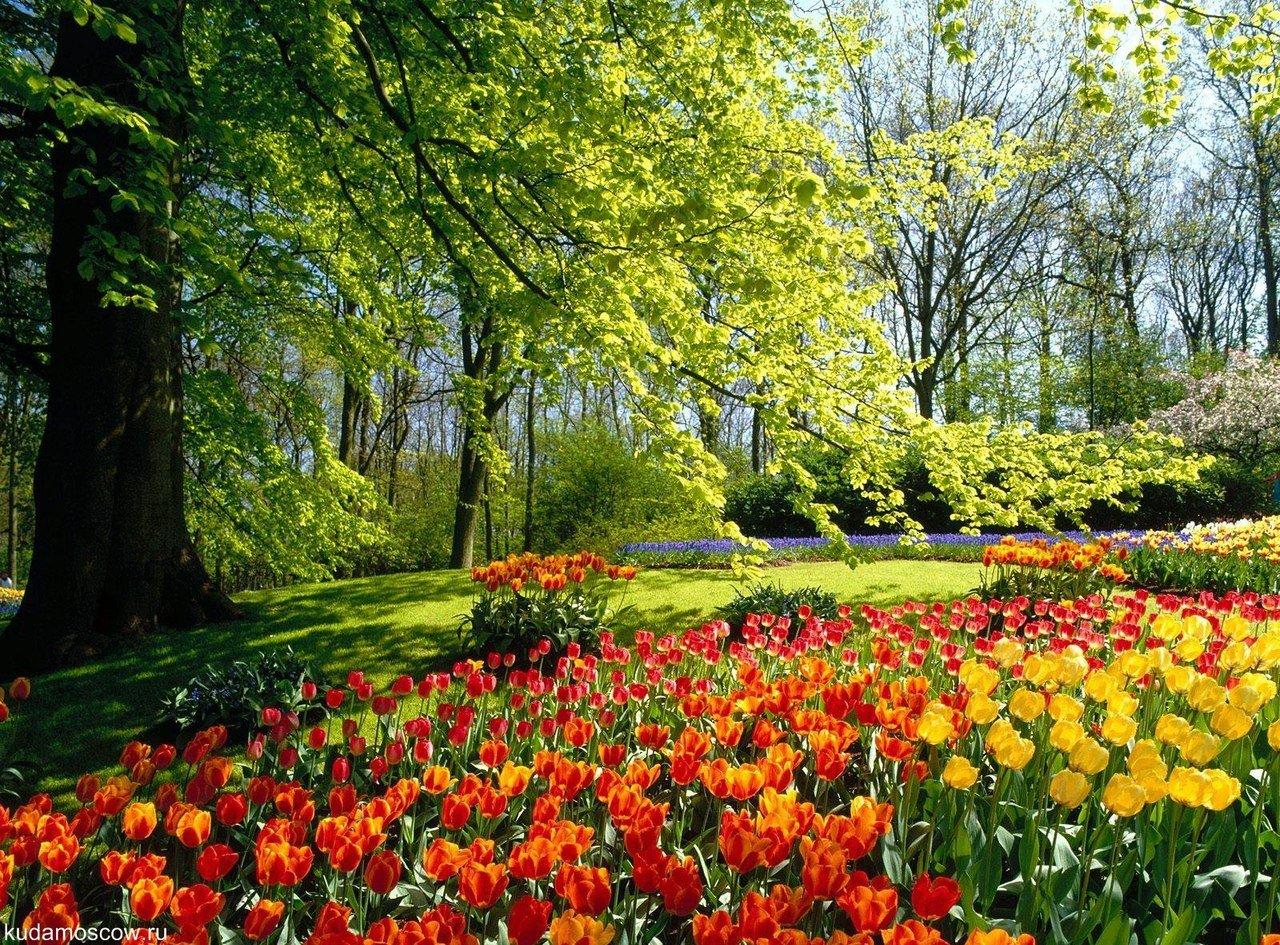 Открытие летнего сезона вмосковских парках 2015