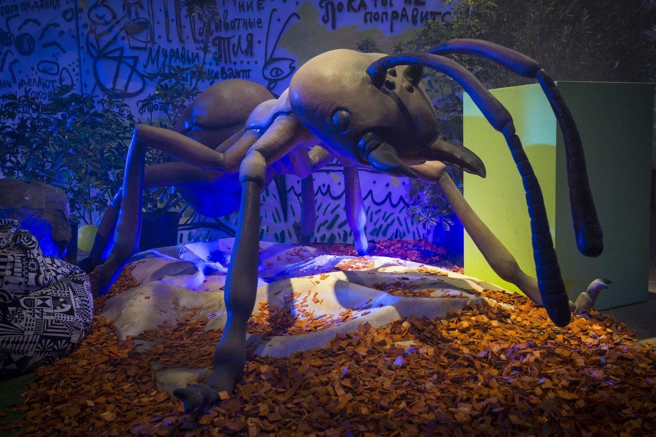 Выставка «Маленькие люди вбольшом мире насекомых»