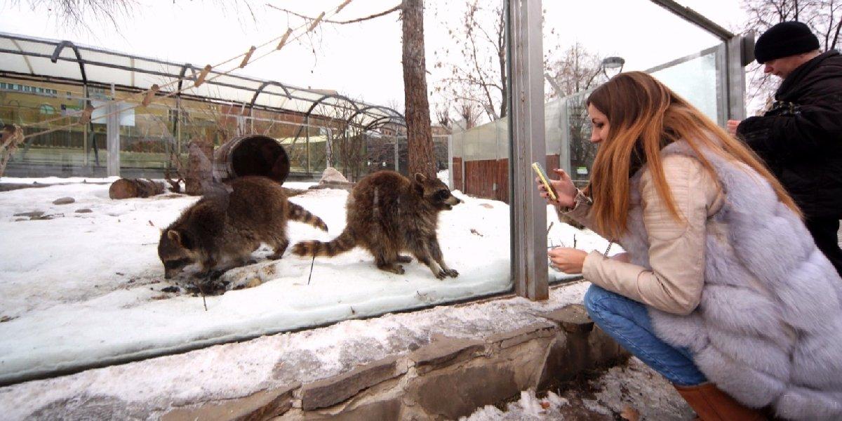 Татьянин день вМосковском зоопарке 2019