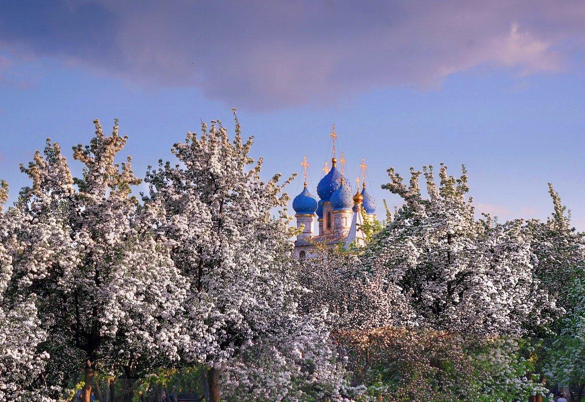 Топ-10 лучших событий навыходные 18 и19 мая вМоскве