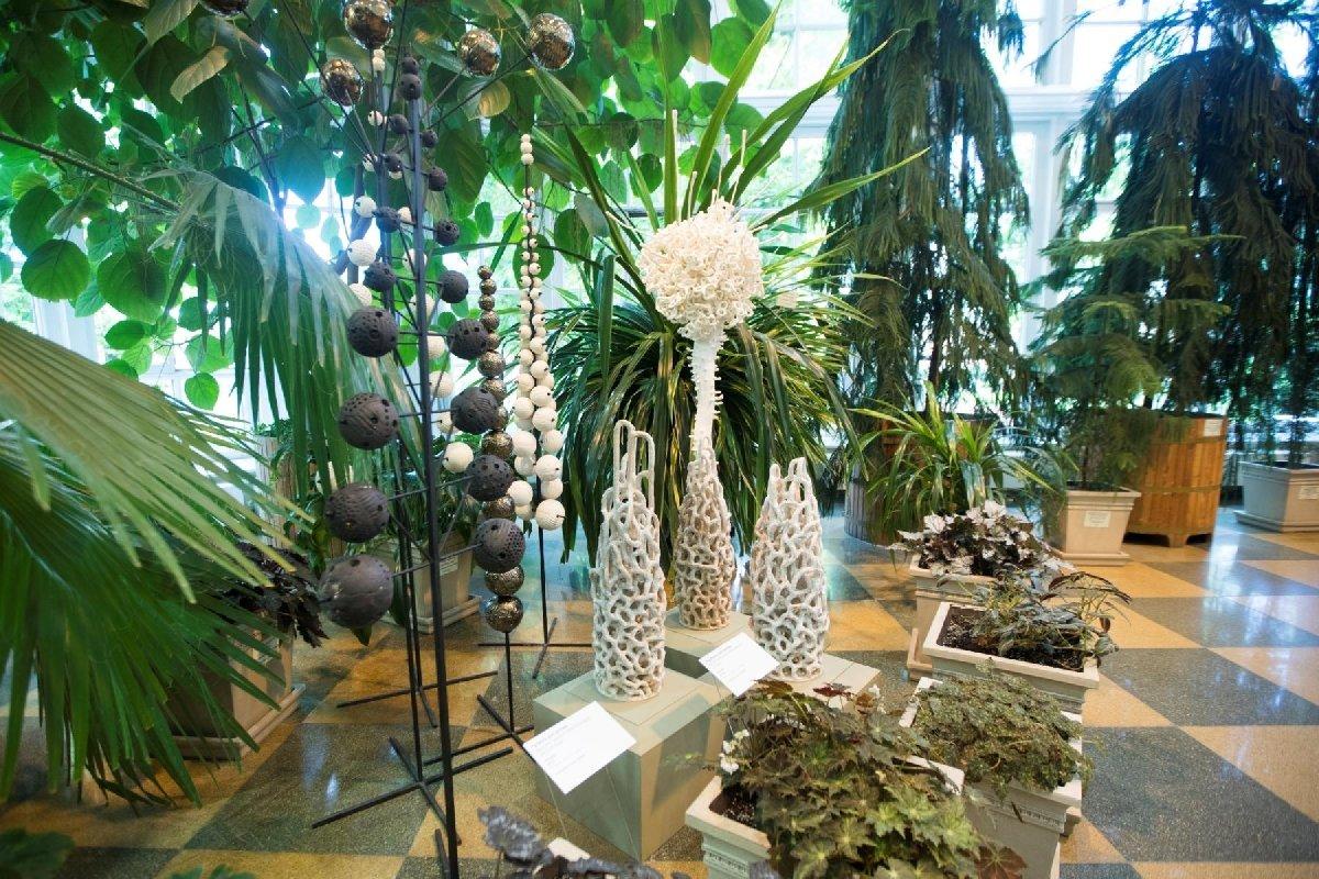 Выставка «Цветы итравы»