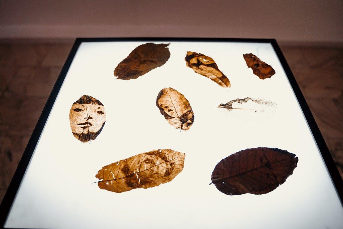 Выставка «Это всё что»