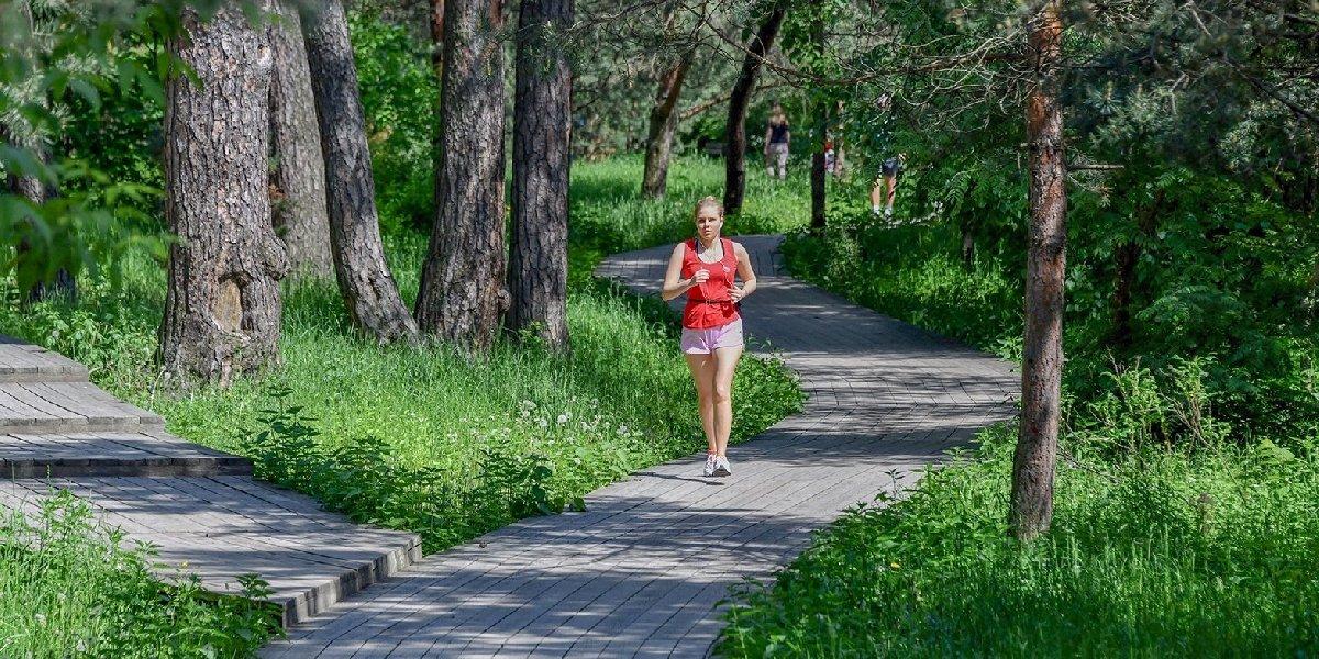 Беговые дорожки впарках Москвы 2020