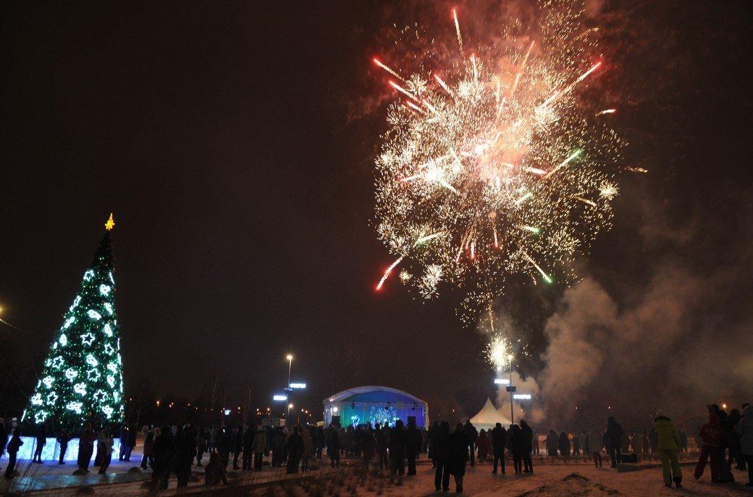 Новогодняя ночь впарке «Садовники» 2017