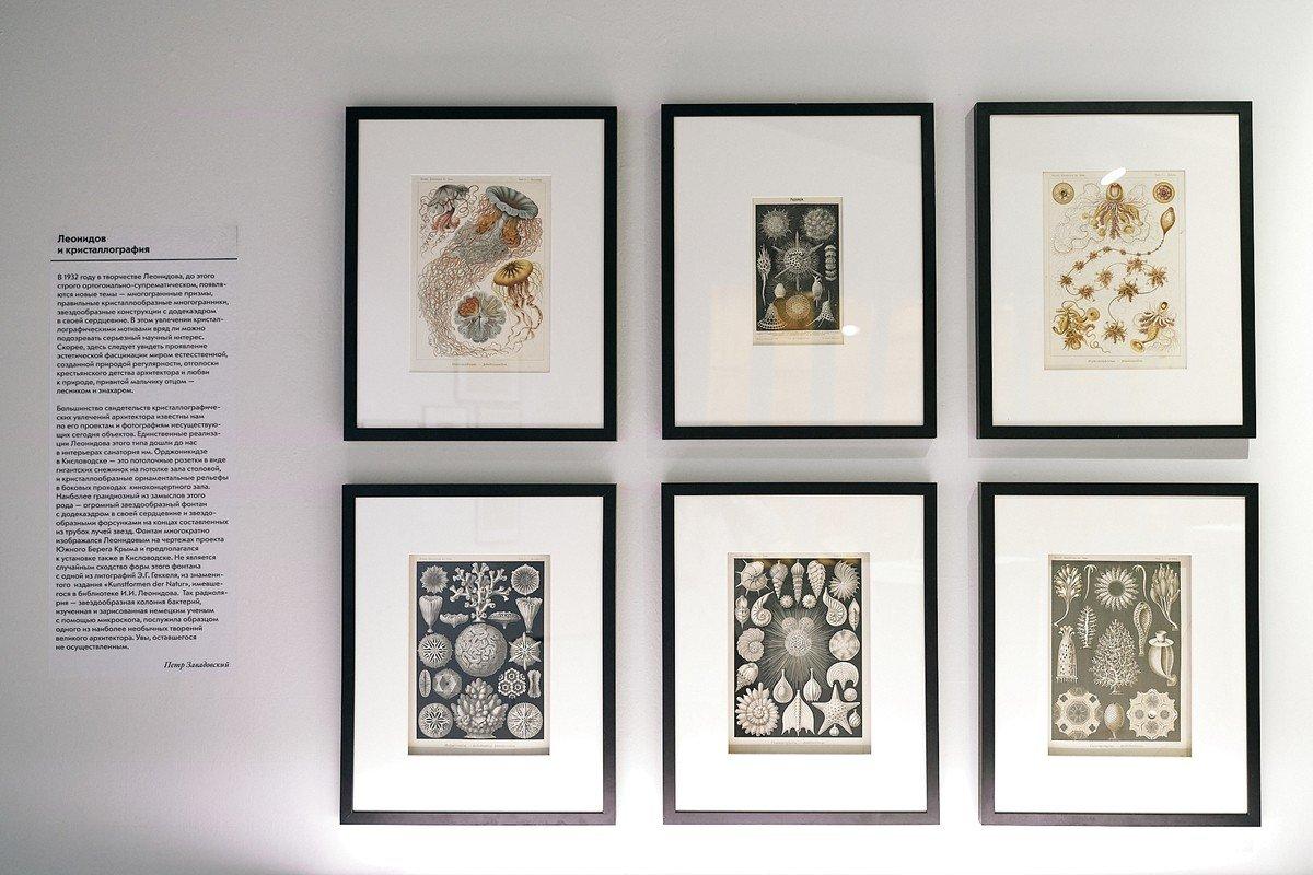 Выставка «Кристаллография Малевича иЛеонидова»
