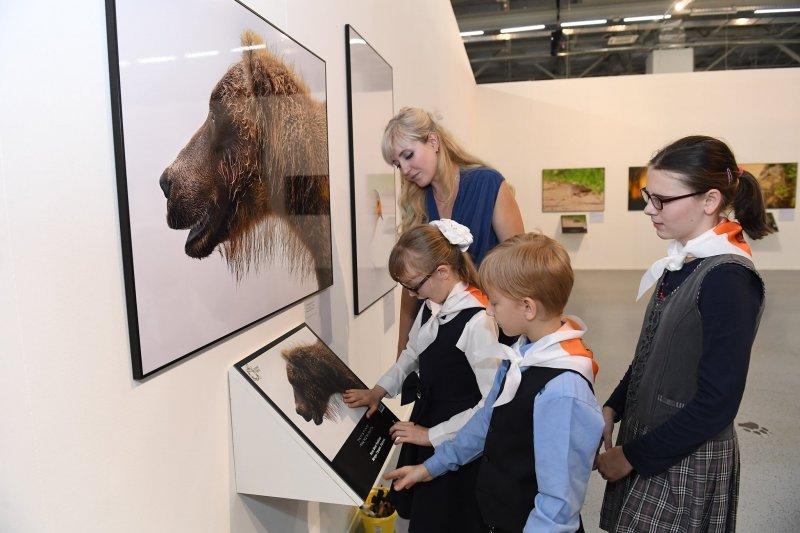 Выставка «Белая книга»