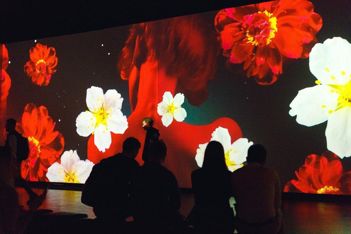 Мультимедийная выставка «Страсти поФрейду»