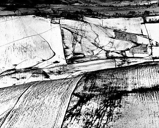 Выставка «Поэтика ландшафтов»