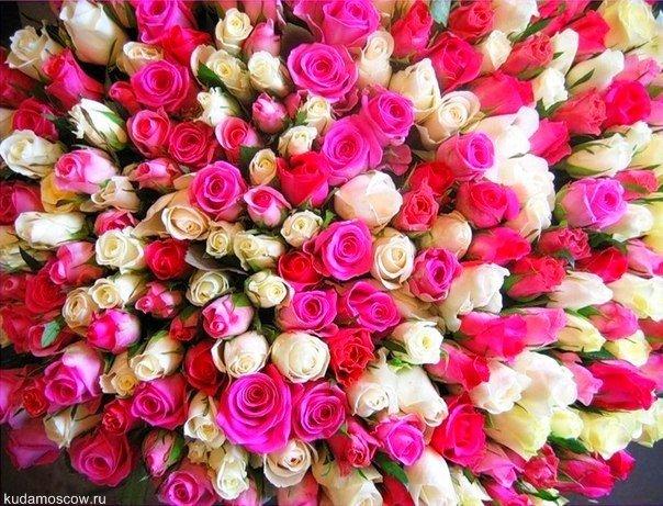Выставка «Цветы/Flowers-IPM»