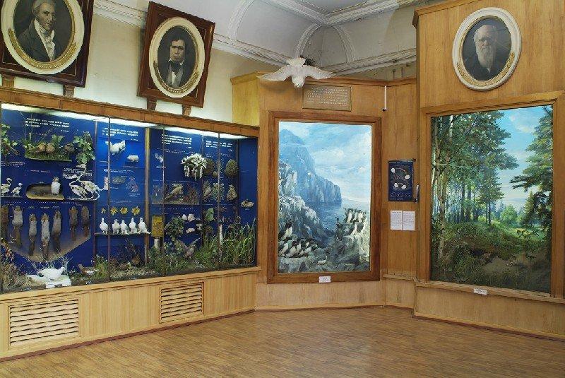 график работы биологического музея