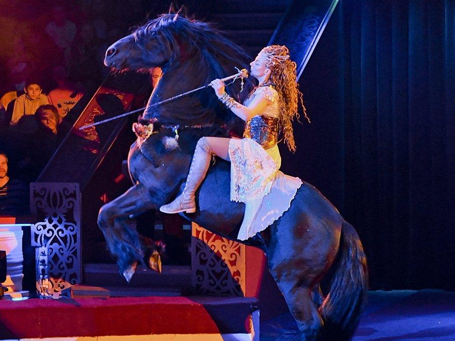 Цирковое шоу «Все будет хорошо!»