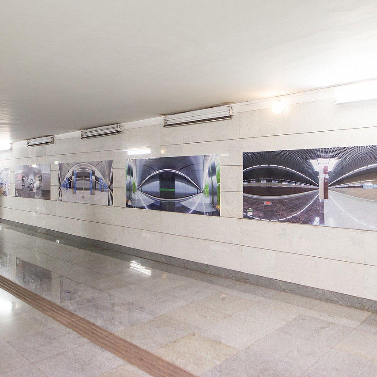 Выставка «Смотри шире»