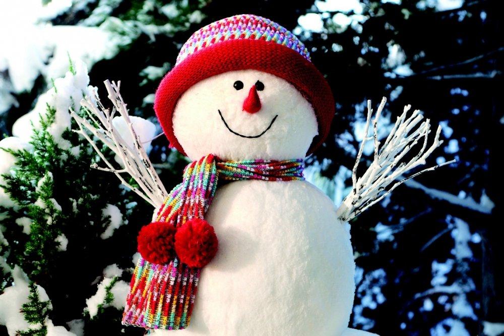 Занятия вШколе снежных искусств