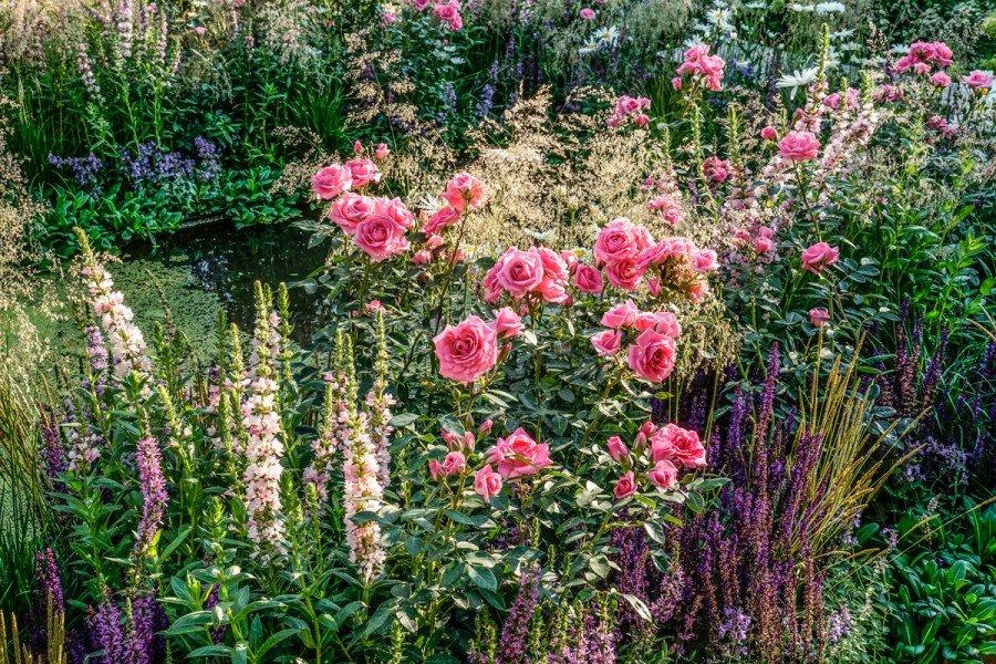 Фестиваль садов ицветов «Moscow Flower Show» 2019