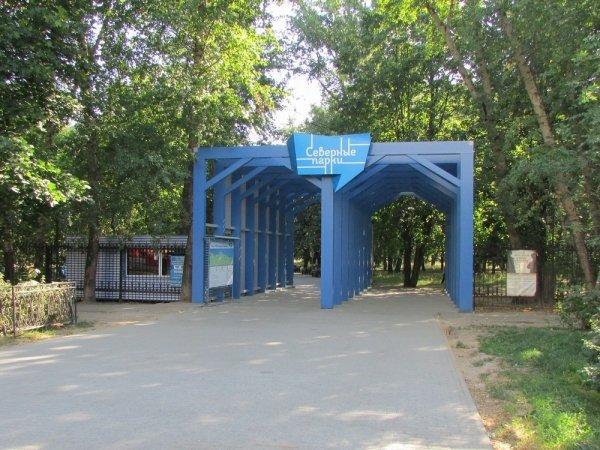 парк тушино фото