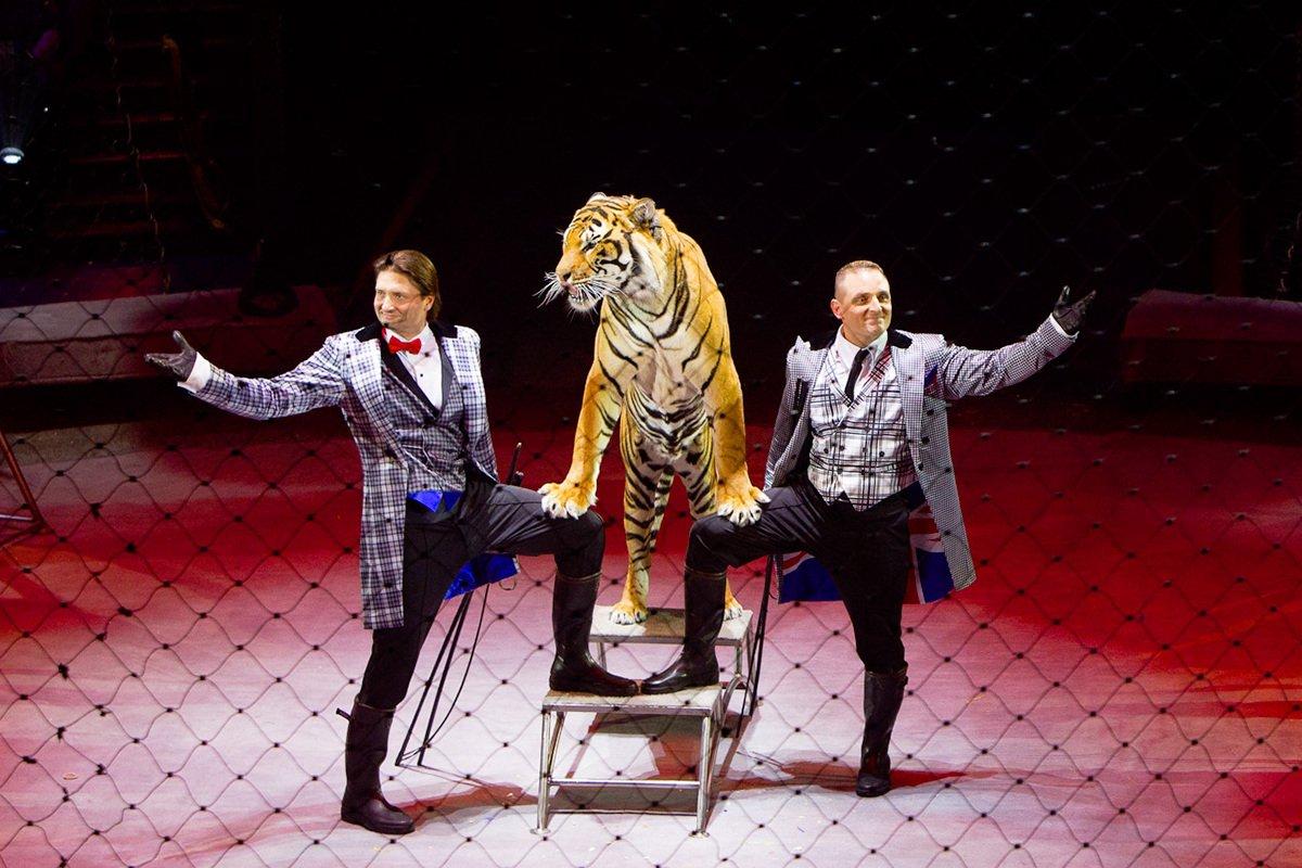 Цирковое шоу «OFU сучастием братьев Запашных» 2020/2021