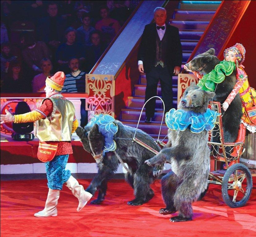 озеру картинка цирка на цветном будет интересно