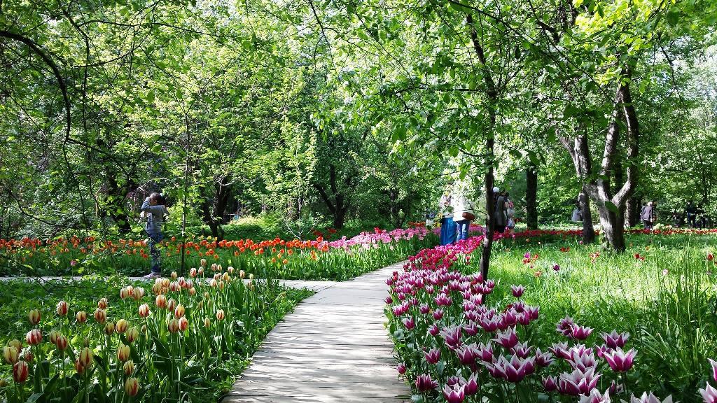 Об этом сообщило агентство москва, ссылаясь на пресс-службу ботанического сада московского государственного